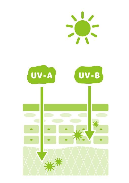 【口コミ】岡田UVミルクは、肌負担を考慮した品質と使い心地でお値段以上。おすすめのノンケミカル日焼け止め